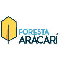 Aracarí